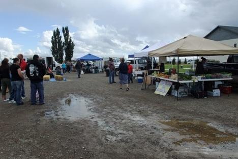 Damp Farmer's Market