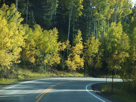 Autumn Colors near Cumbres Pass